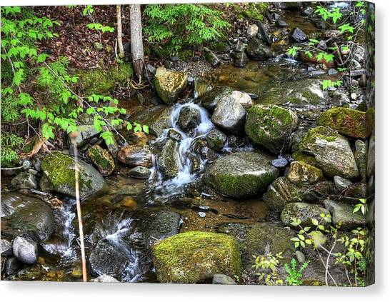 Lowell Mountain Stream Canvas Print