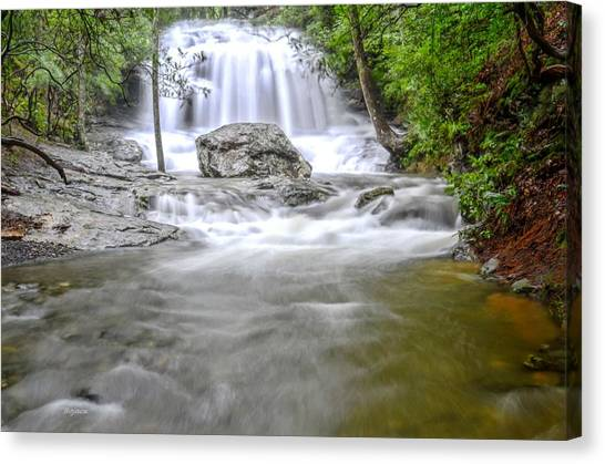 Lower Disharoon Falls Canvas Print by Bob Jackson