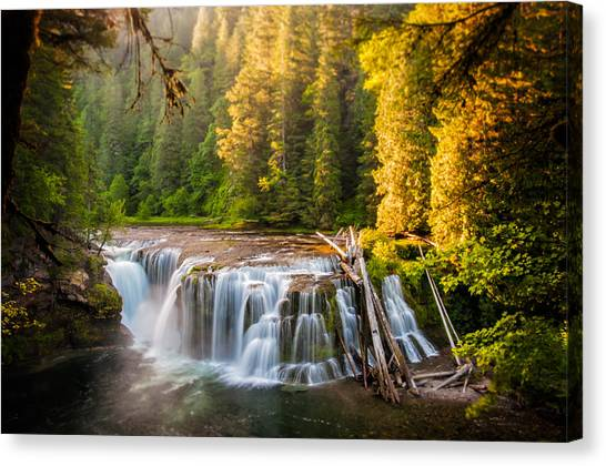Lower Lewis River Falls Sunrise Canvas Print