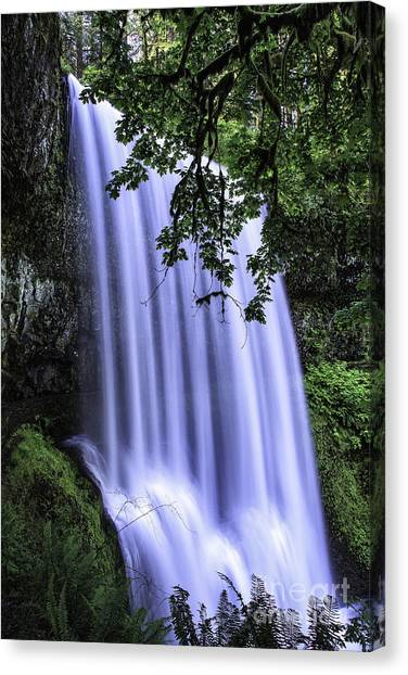 Lower South Falls IIi Canvas Print