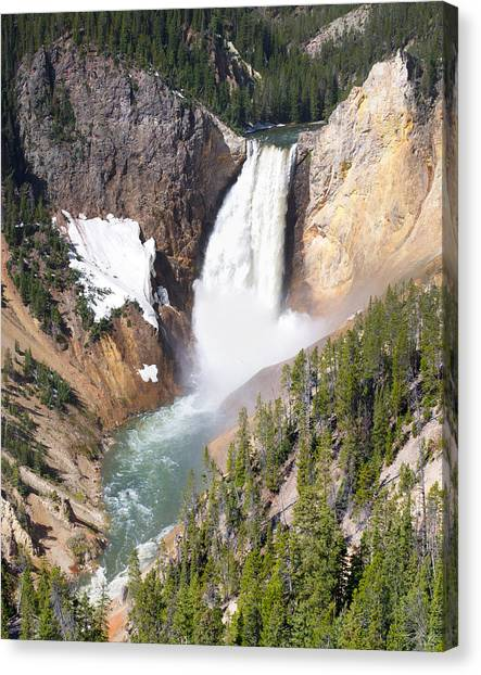 Great Falls Of Yellowstone Canvas Print - Lower Yellowstone Falls by Aaron Spong
