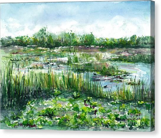 Loxahatchee Marsh Canvas Print