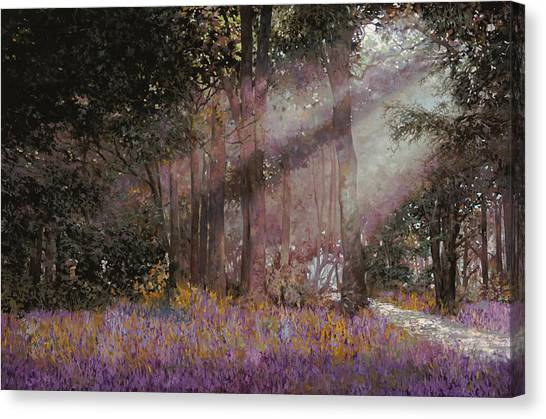 Bush Canvas Print - Luci by Guido Borelli