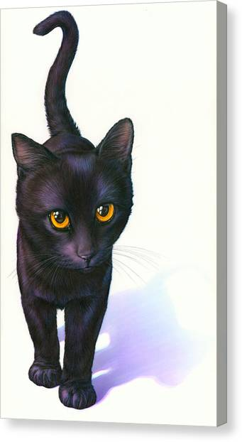 Andrew Canvas Print - Lucky Cat by MGL Meiklejohn Graphics Licensing
