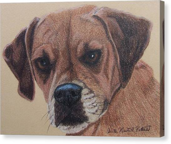 Lucy-puggle Commission Canvas Print