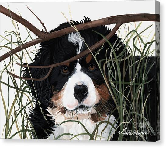 Bernese Mountain Dogs Canvas Print - Lucy You've Got Some'splainin To Do by Liane Weyers
