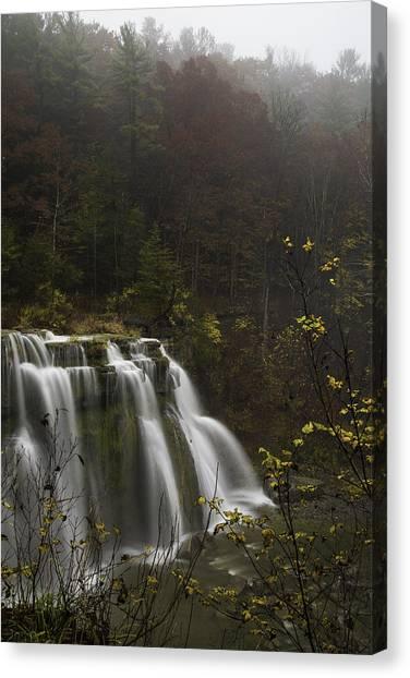 New York University Canvas Print - Ludlowville Falls In Autumn I by Michele Steffey