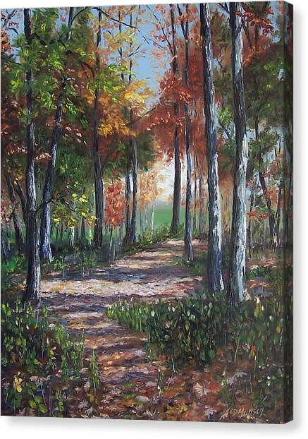Lullabye Forest Canvas Print by Donna Munsch