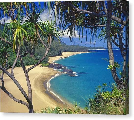 Lumahai Beach Canvas Print
