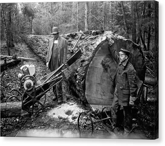 Saws Canvas Print - Lumberjack With Early Chainsaw by Underwood Archives