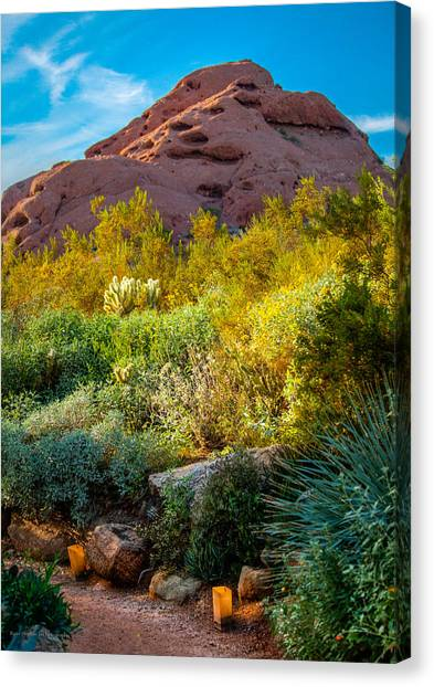 Luminarias In The Afternoon Canvas Print