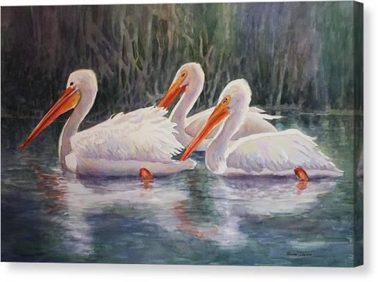 Luminous White Pelicans Canvas Print