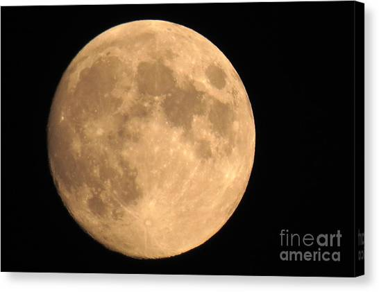 Lunar Mood Canvas Print