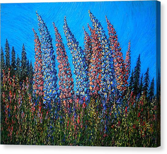 Lupins - Study No. 1 Canvas Print