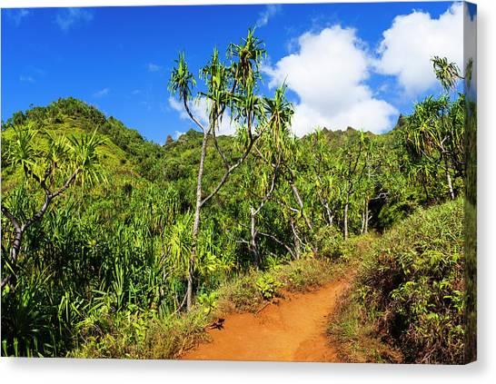 Bishop Hill Canvas Print - Lush Vegetation Along The Kalalau Trail by Russ Bishop