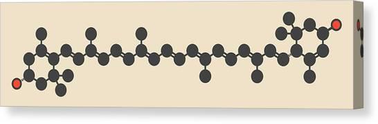Watercress Canvas Print - Lutein Carotenoid Molecule by Molekuul