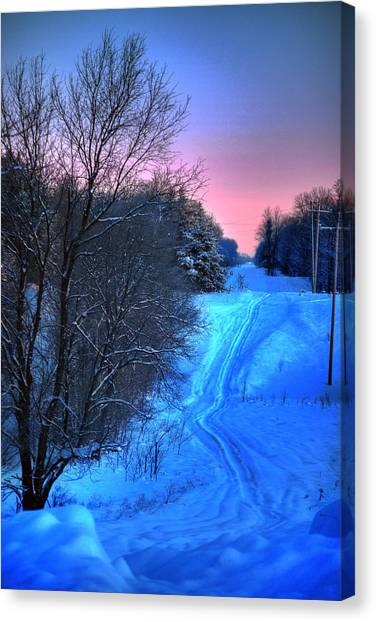 Canvas Print - Lwv50008 by Lee Wolf Winter