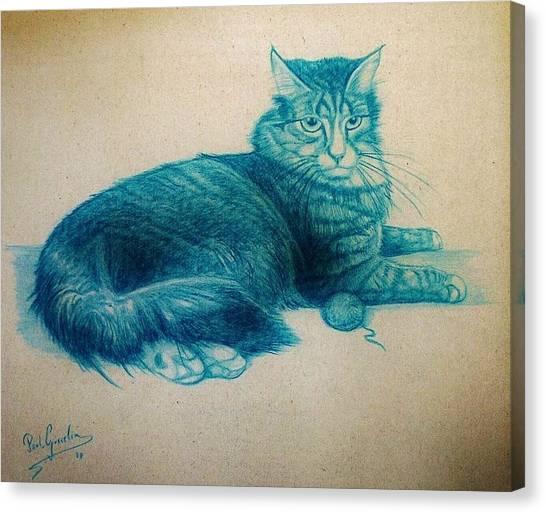 Fineart Canvas Print - Lying Cat by Paul Gosselin