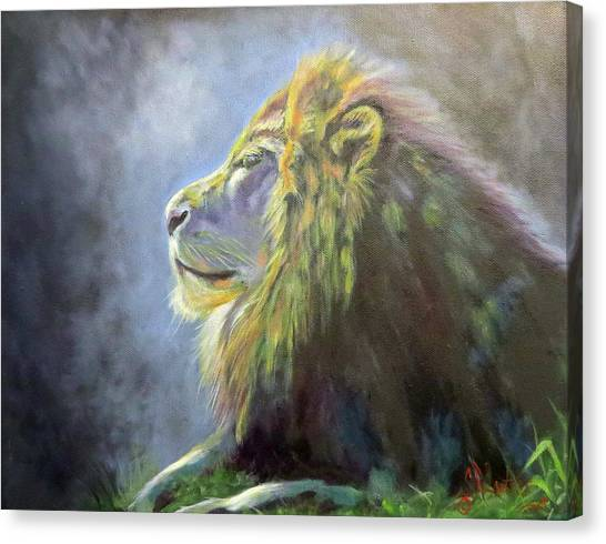 Lying In The Moonlight, Lion Canvas Print