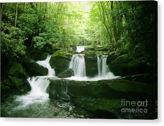 Lynn Camp Prong Falls Canvas Print