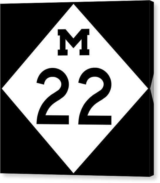 M 22 Canvas Print