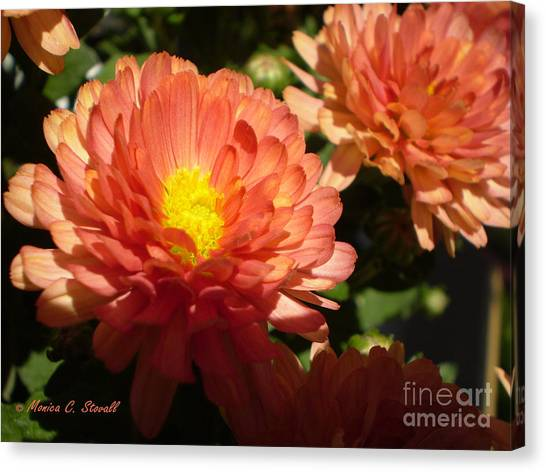 M Bright Orange Flowers Collection No. Bof1 Canvas Print