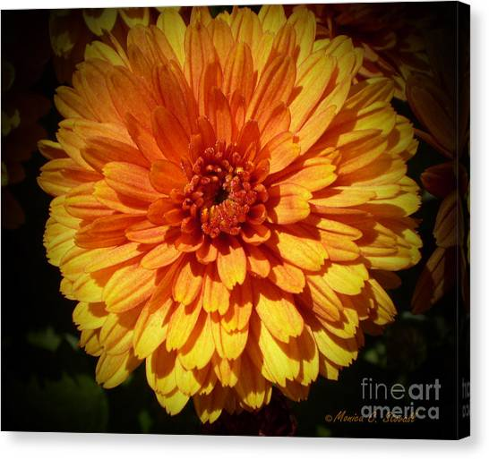 M Bright Orange Flowers Collection No. Bof8 Canvas Print
