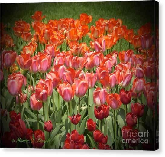 M Color Combination Flowers Collection No. Cc12 Canvas Print