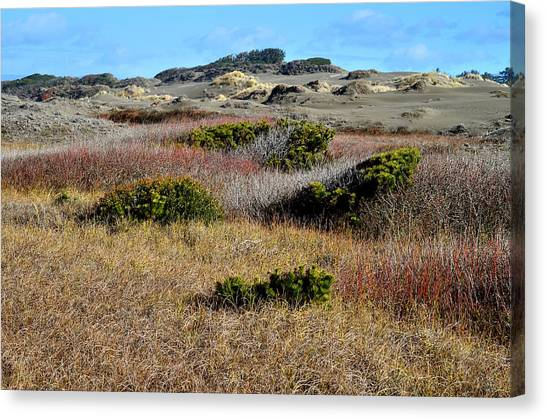 Canvas Print featuring the photograph Ma-le'l Dunes by Jon Exley