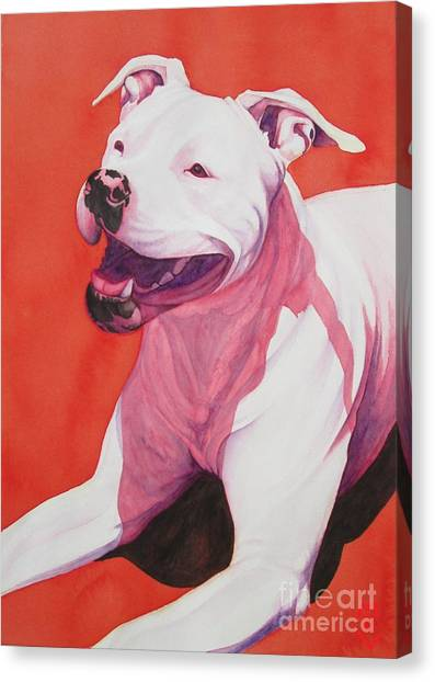 Machappy Canvas Print