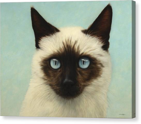 Siamese Canvas Print - Machka by James W Johnson
