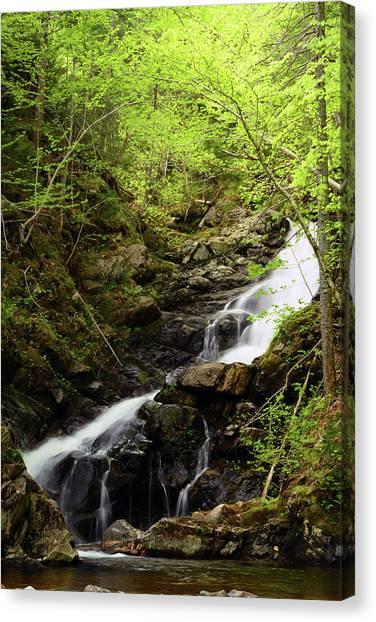 Cabot Trail Canvas Print - Macintosh Brook Waterfalls In Cape by Darlyne A. Murawski