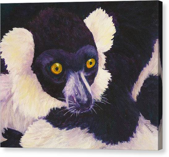 Madagascan Magic Canvas Print