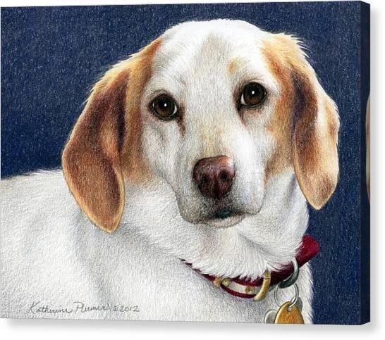 Beagles Canvas Print - Maddie by Katherine Plumer