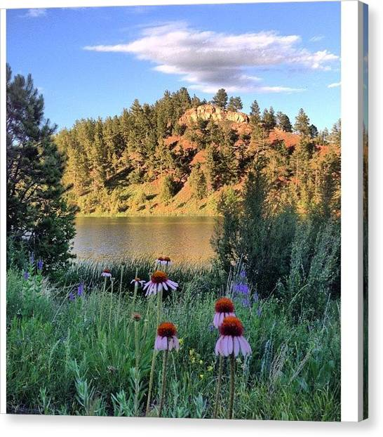 Dirt Road Canvas Print - (made With #nocrop) A Small #lake In by Brian Havican