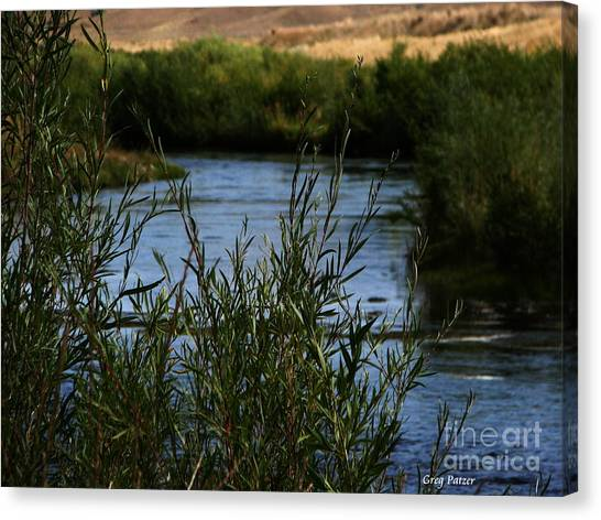 Madison River Canvas Print by Greg Patzer