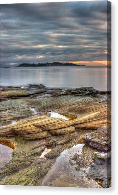 Madrona Sunrise Canvas Print