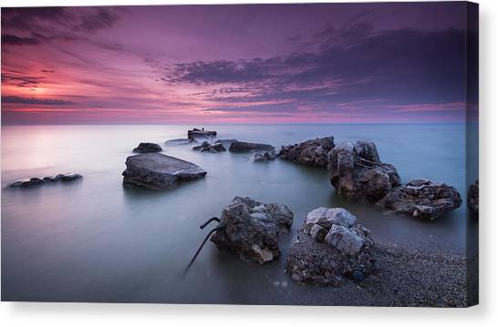 Magenta Morning Canvas Print