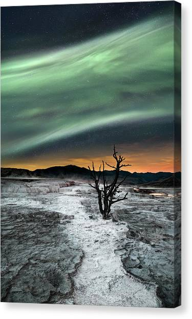 Aurora Borealis Canvas Print - Magic Aurora by Liloni Luca