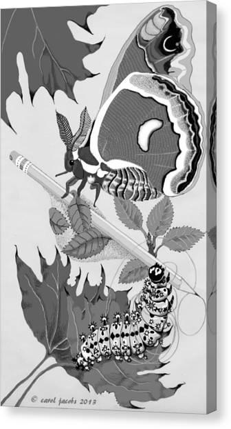 Magic Pencil Canvas Print