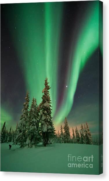 Yukon Canvas Print - Magic Winter Night by Priska Wettstein