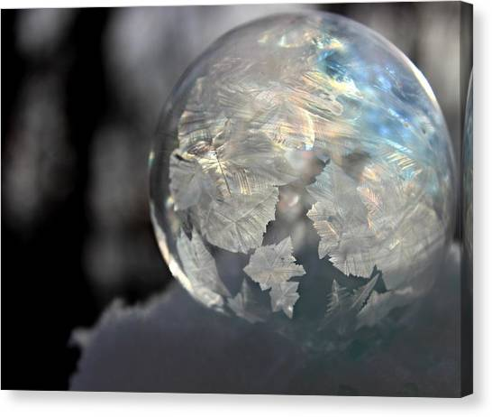 Canvas Print featuring the photograph Magical Bubble by Candice Trimble