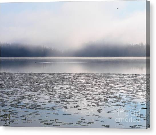 Magical Morning Of Mist Canvas Print