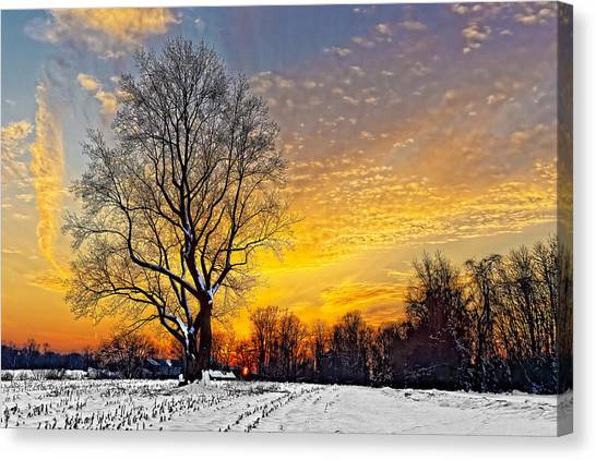 Magical Winter Sunset Canvas Print