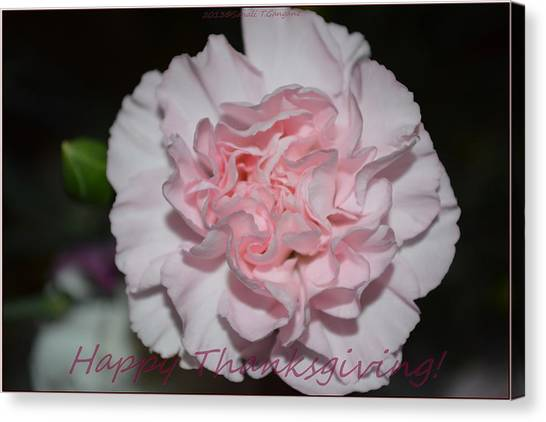 Magnetic Pink Canvas Print