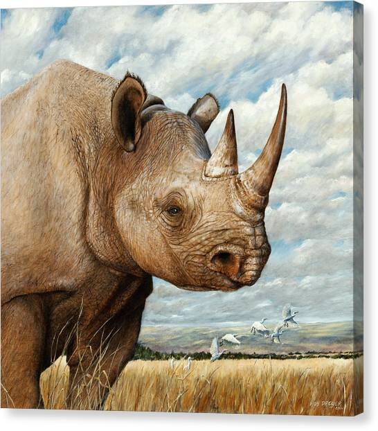 Rhinos Canvas Print - Magnificence by Dreyer Wildlife Print Collections