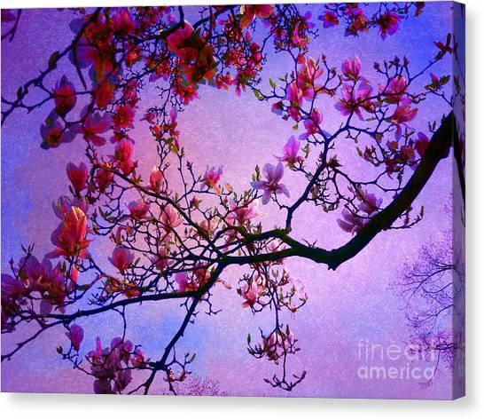 Magnolia #2 Canvas Print by Angela Bruno