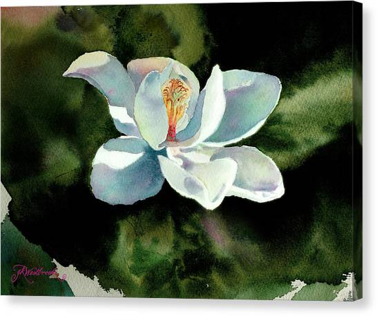 Magnolia At Starwood Glen Canvas Print