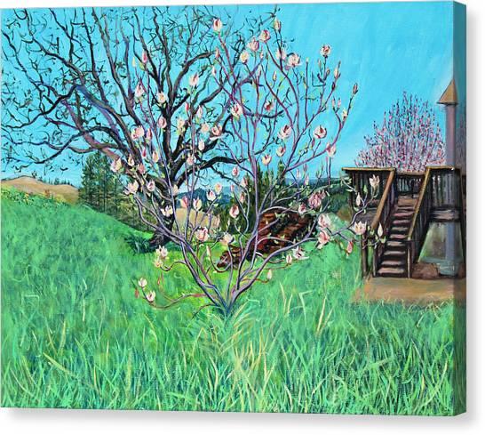Magnolia Blooming At The Farm Canvas Print
