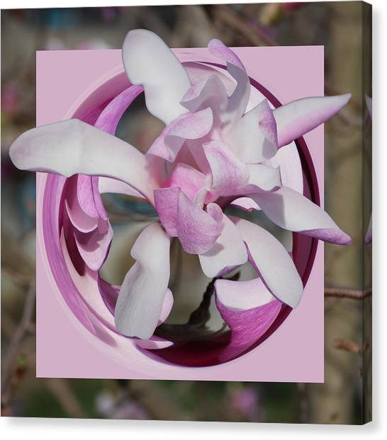Canvas Print featuring the photograph Magnolia Blossom Series 1302 by Jim Baker